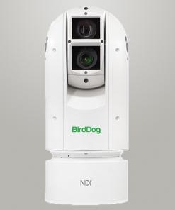 BirdDog EYES A300 (NDI, SDI y HDMI)